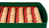 Incubadora automática ET 49 Huevos - Huevos Alveolo Grandes