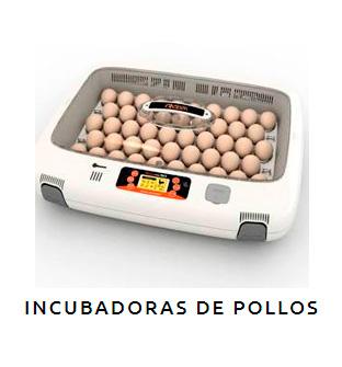 Incubadoras de Pollos